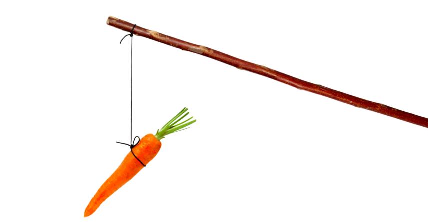 """Câu chuyện """"cây gậy và củ cà-rốt"""""""